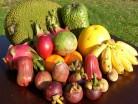Exotické plody